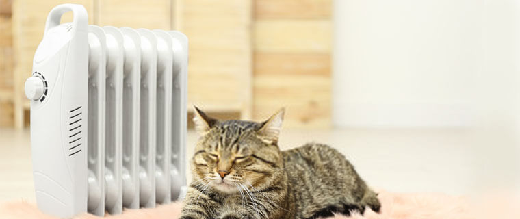 Which type of space heater is the most energy-efficient, What type of electric heater is the cheapest to run